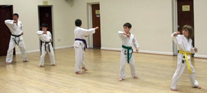 Group Martial Arts Class Derby