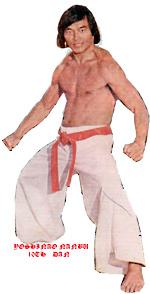 Picture of Yoshinao Nanbu, Founder of The Sankukai Style of Karate